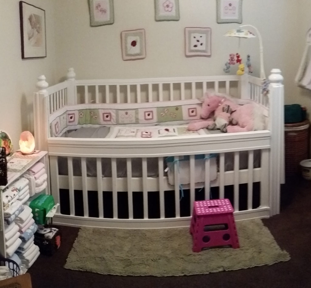 The Adult Baby Crib